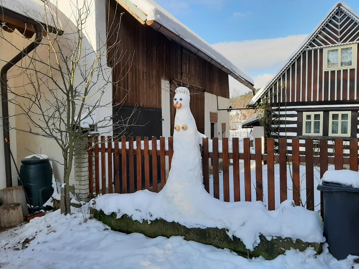 This female snow-woman reminds me of a mermaid - although obviously she would not be in the mountains